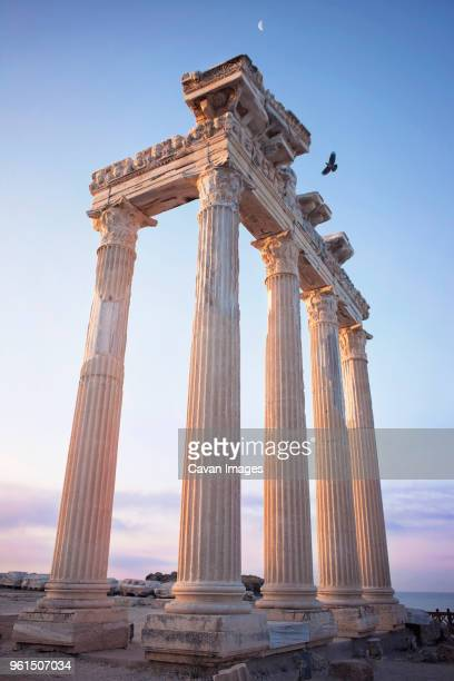 low angle view of architectural columns against sky during sunset - antalya stock-fotos und bilder