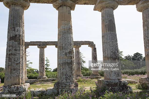 Low Angle View Of Architectural Columns At Palatine Tables