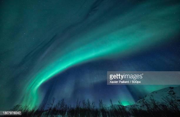 low angle view of aurora borealis against sky at night,lofoten,norway - de ruimte en astronomie stockfoto's en -beelden