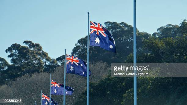 low angle view of australian flags by trees against clear sky - australian flag stock pictures, royalty-free photos & images