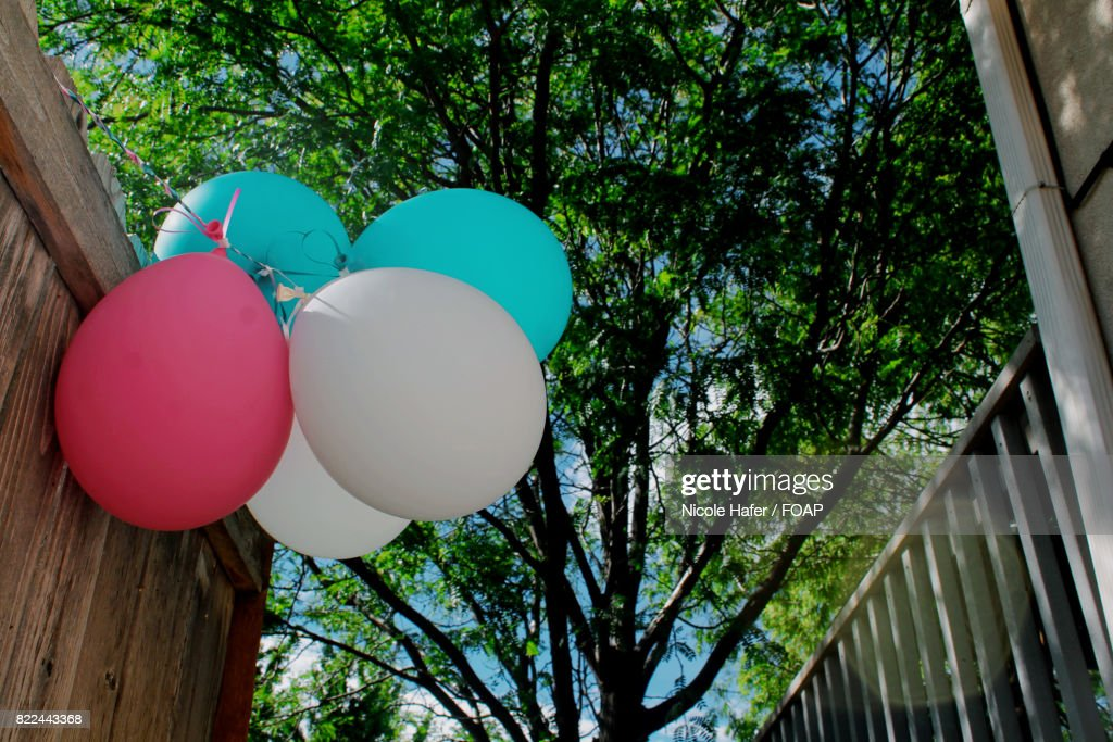 Low angle view of balloons : Stock Photo