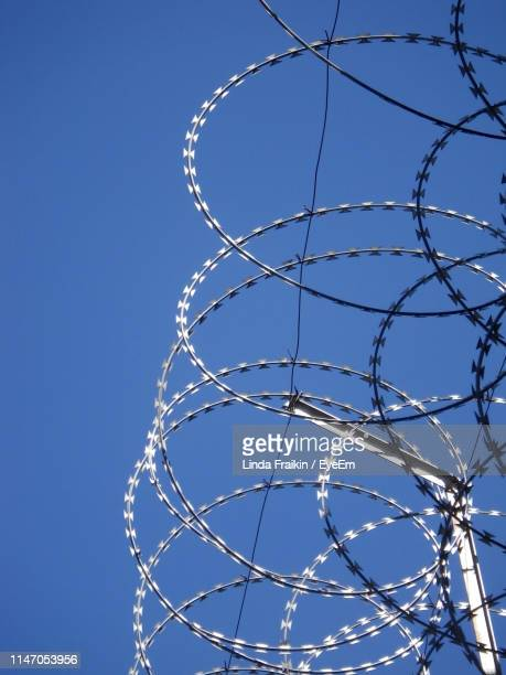 low angle view of barbed wire against clear sky - linda fraikin stock pictures, royalty-free photos & images