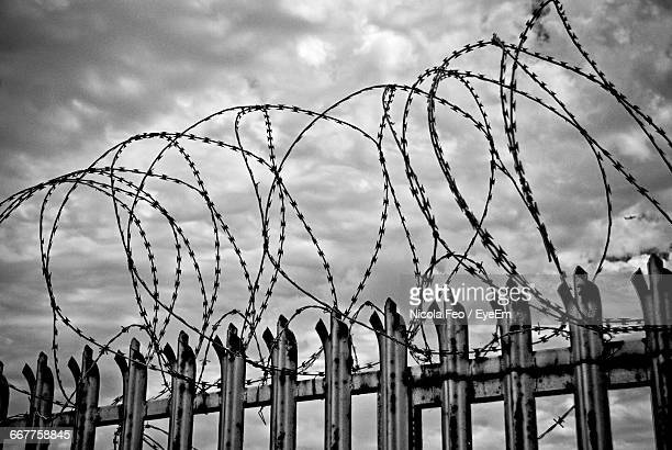 low angle view of barbed wire against cloudy sky - thorn stock pictures, royalty-free photos & images