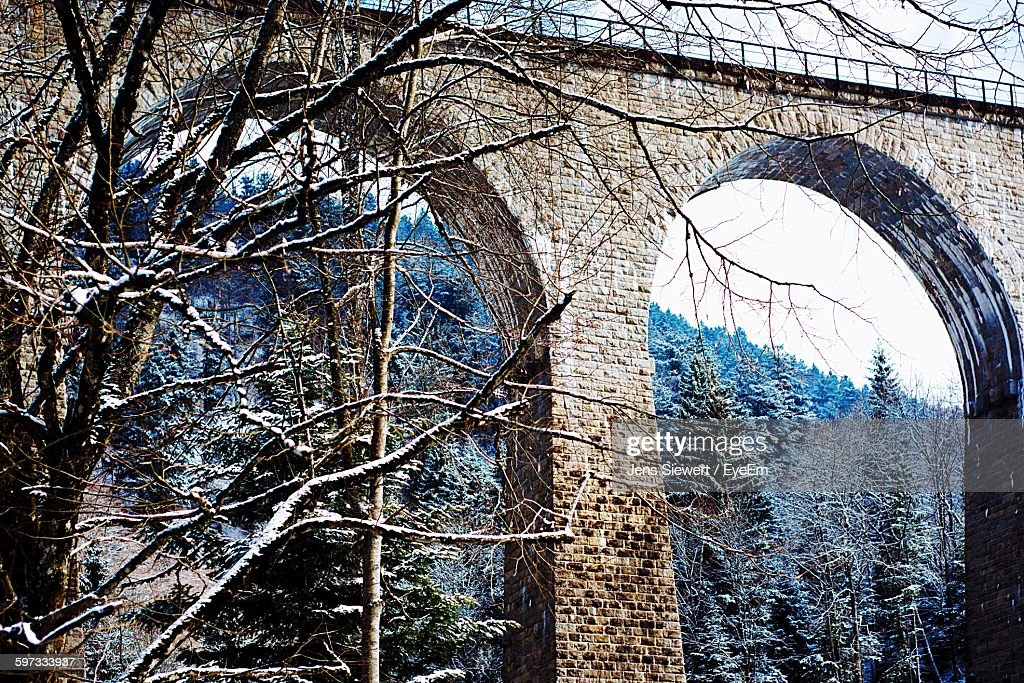 Low Angle View Of Bare Tree Against Ravenna Bridge : Stock-Foto