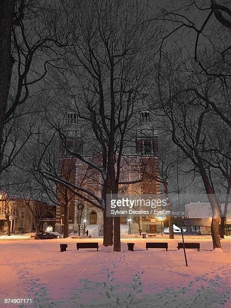 Low Angle View Of Bare Trees In Front Of Church During Winter