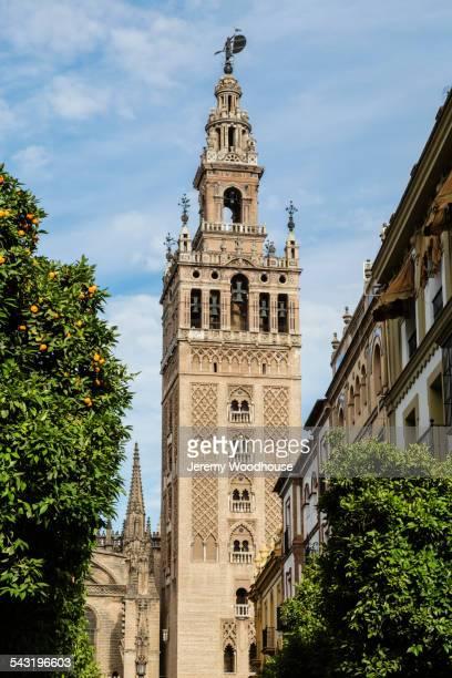 low angle view of bell tower over seville cityscape, andalusia, spain - la giralda fotografías e imágenes de stock