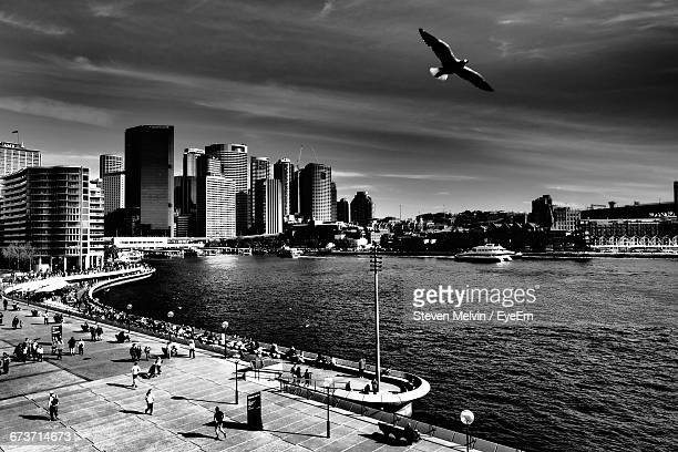 Low Angle View Of Bird Flying Above People And Sea In City
