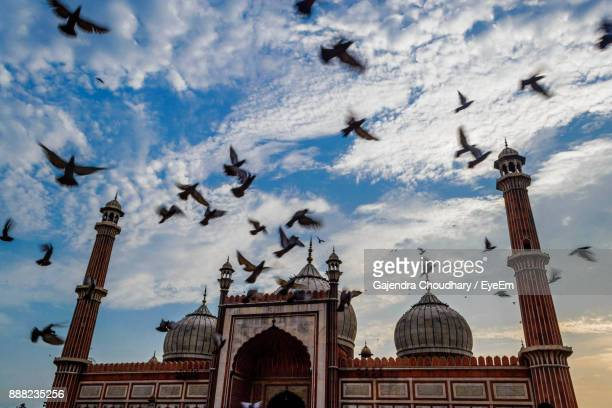 Low Angle View Of Birds Flying Against Jama Masjid During Sunset