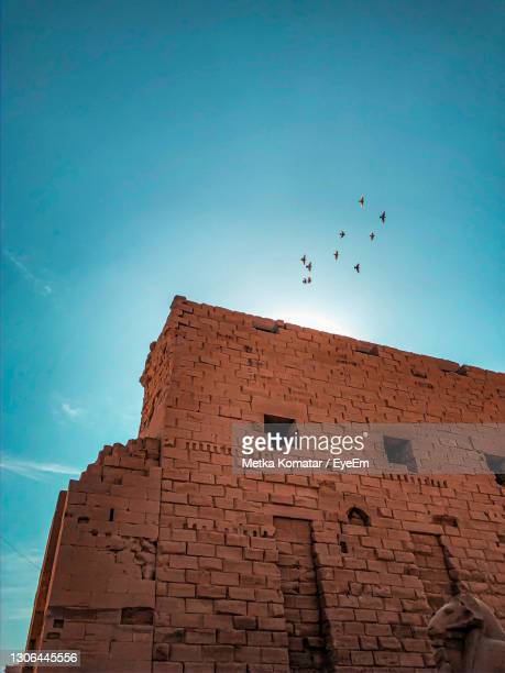low angle view of birds flying against sky - colors soundtrack stock pictures, royalty-free photos & images