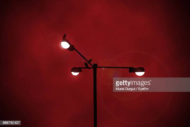 Low Angle View Of Birds Perching On Illuminated Street Light Against Sky At Night