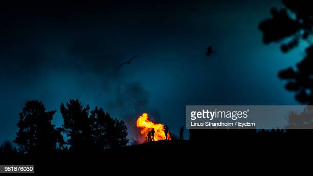 low angle view of bonfire by silhouette trees against sky at night - utomhuseld bildbanksfoton och bilder