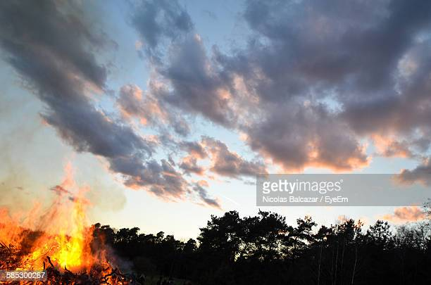 low angle view of bonfire by silhouette trees against sunset sky during easter - osterfeuer stock-fotos und bilder