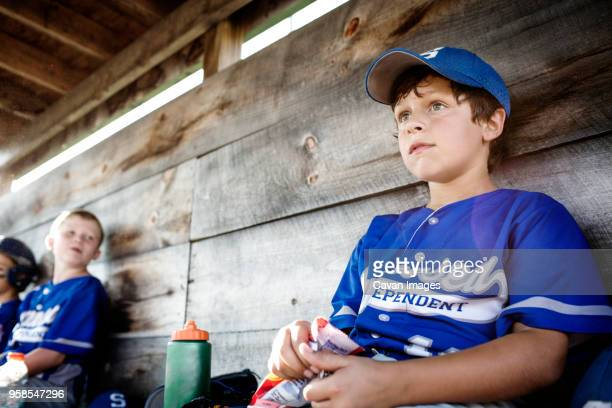 low angle view of boys sitting in dugout and looking away - banquillo deportivo fotografías e imágenes de stock
