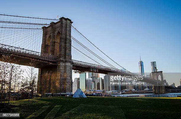 Low Angle View Of Brooklyn Bridge By Lawn With Cityscape In Background