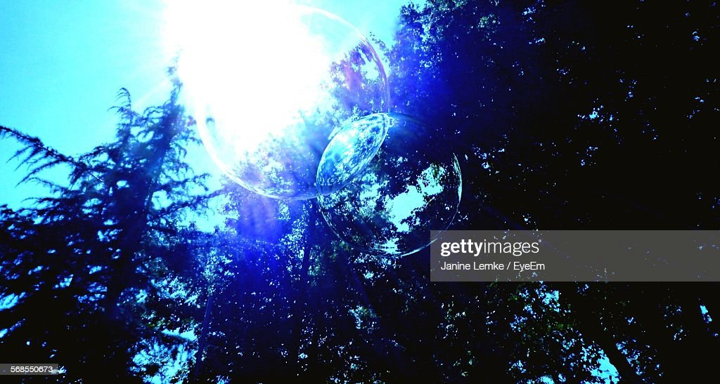 Low Angle View Of Bubble Against Trees : Stock Photo