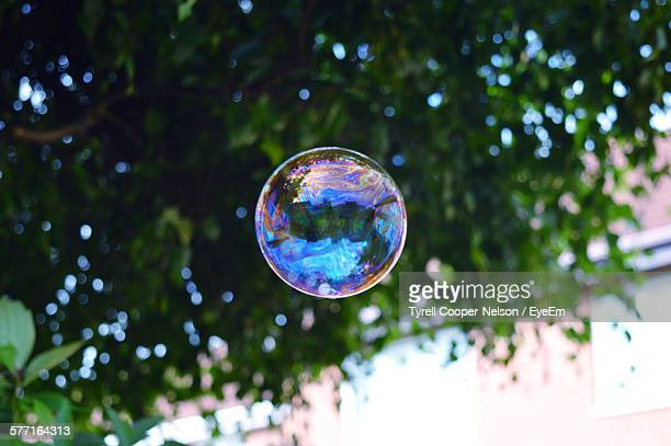 Low Angle View Of Bubble In Mid-Air Against Tree
