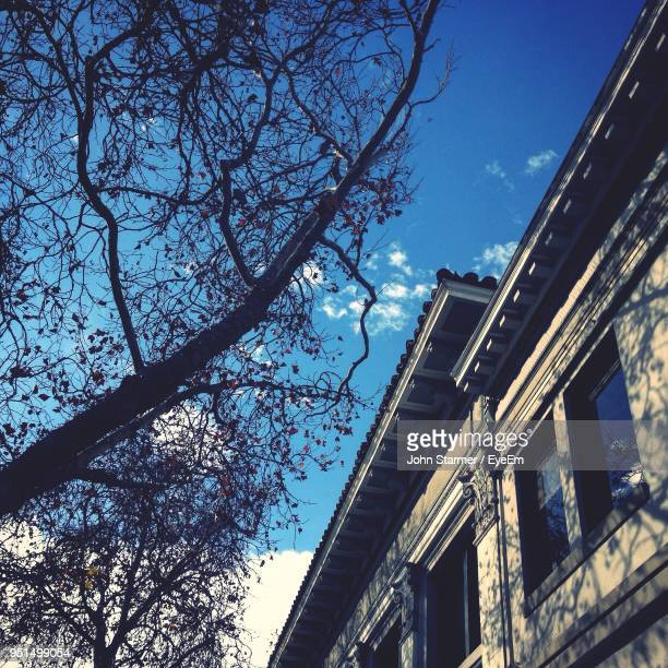 low angle view of building against blue sky - palo alto and 街 ストックフォトと画像