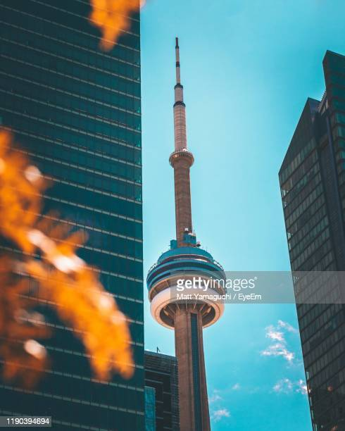 low angle view of buildings against sky - toronto stock pictures, royalty-free photos & images