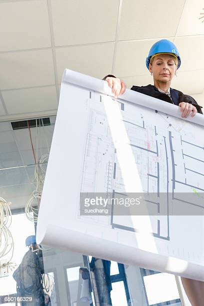 Low angle view of businesswoman rolling blueprint in new office