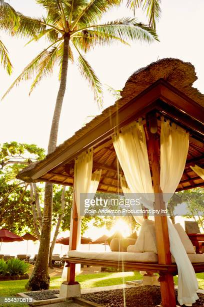 low angle view of cabana under palm tree - gazebo stock pictures, royalty-free photos & images