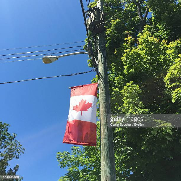 Low Angle View Of Canadian Flag On Street Light By Tree