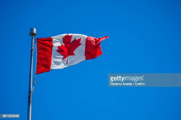 low angle view of canadian flag waving against blue sky - canadian flag stock pictures, royalty-free photos & images