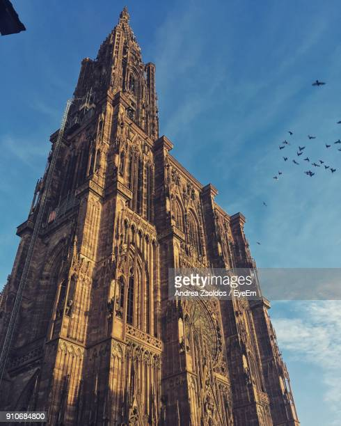 low angle view of cathedral against sky - strasbourg stock pictures, royalty-free photos & images