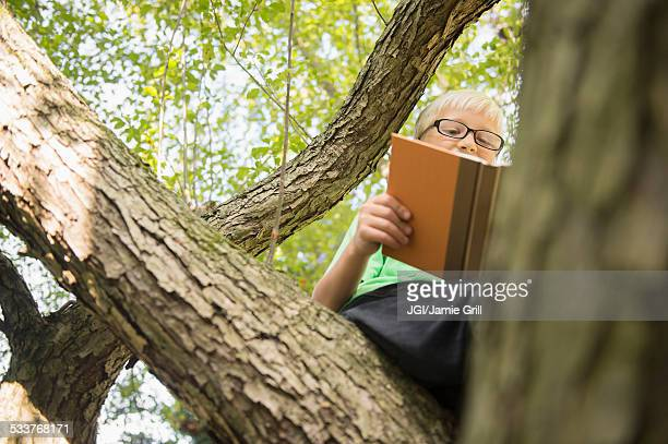 Low angle view of Caucasian boy reading in tree