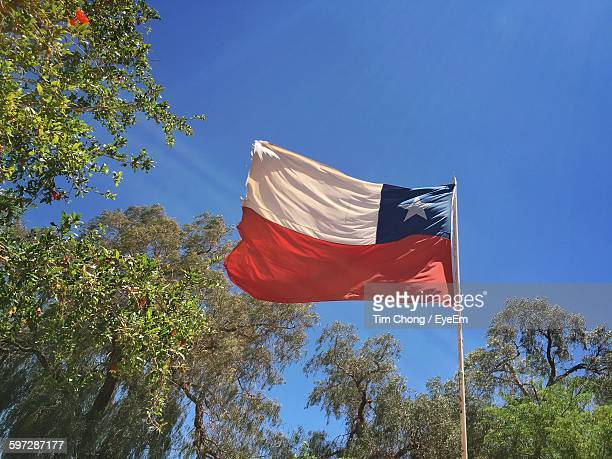 low angle view of chilean flag by trees against sky - bandera chilena fotografías e imágenes de stock