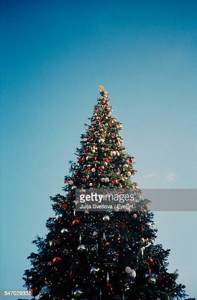 Low Angle View Of Christmas Tree Against Clear Sky