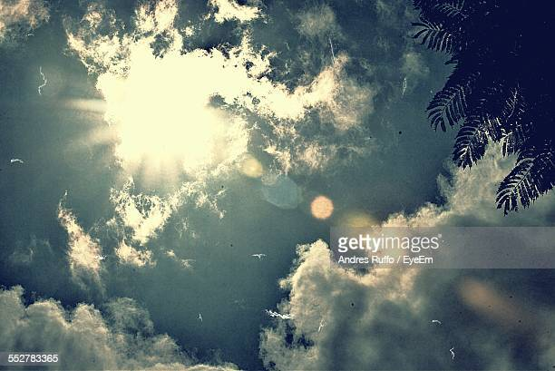 low angle view of cloudy sky - andres ruffo stock pictures, royalty-free photos & images