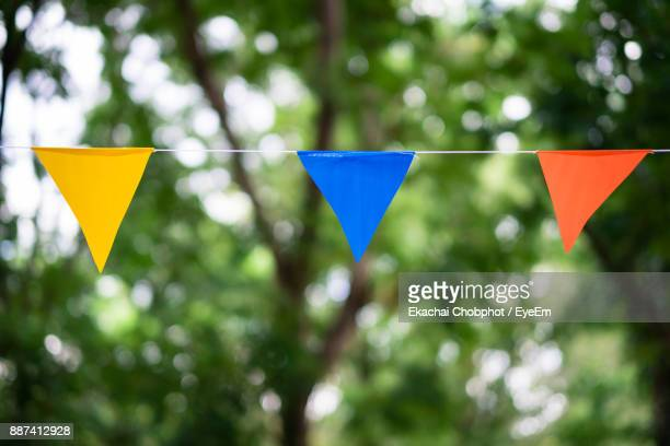 low angle view of colorful bunting hanging against trees - banderines fotografías e imágenes de stock