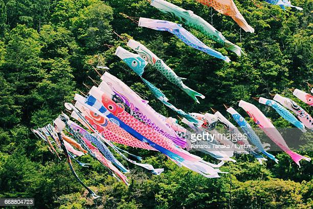 Low Angle View Of Colorful Koinobori Against Trees