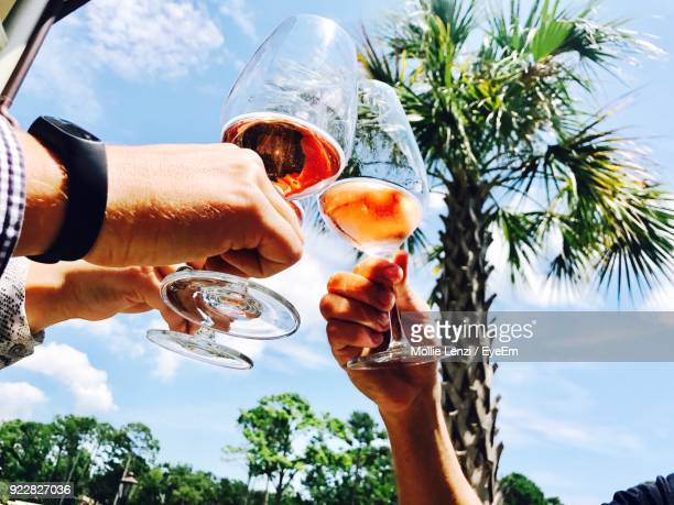 low angle view of cropped hands toasting drinks against trees - hilton head stock pictures, royalty-free photos & images