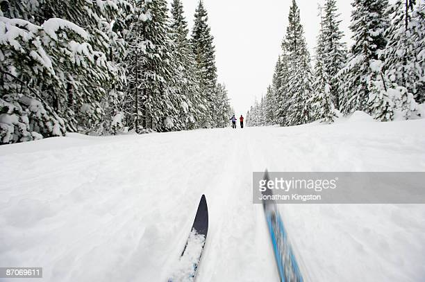 low angle view of cross country ski tips and two young women nordic skiing on a cross country trail in the snow in bend, oregon. - bend oregon stock photos and pictures