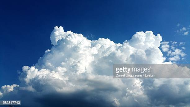 low angle view of cumulus cloud - nuvens fofas imagens e fotografias de stock