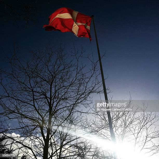 Low Angle View Of Danish Flag By Bare Trees Against Sky