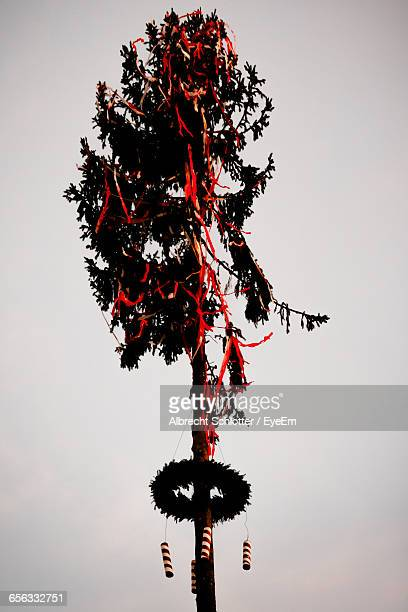 low angle view of decorated tree against clear sky during festival - albrecht schlotter stock-fotos und bilder