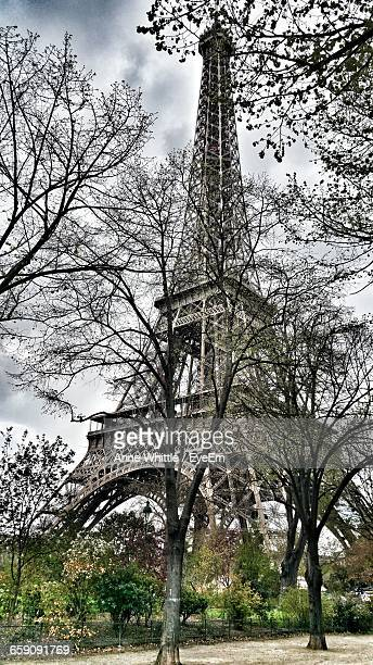 Low Angle View Of Eiffel Tower By Trees