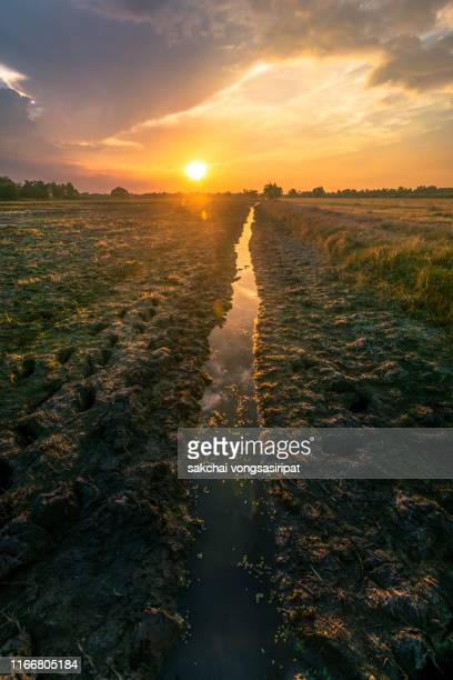 low angle view of farm against sky during sunset - low stock pictures, royalty-free photos & images
