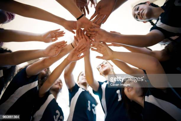 low angle view of female volleyball sports team huddling - huddling stock pictures, royalty-free photos & images