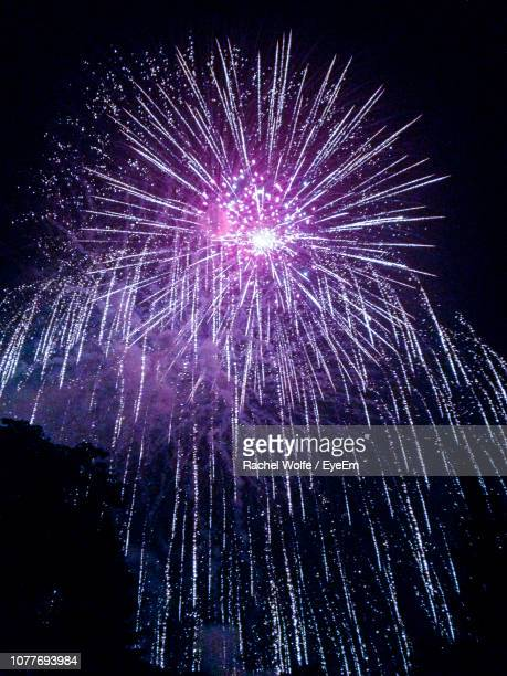 low angle view of firework display against sky at night - rachel wolfe stock pictures, royalty-free photos & images