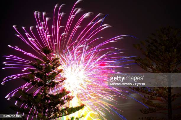 low angle view of firework display at night - wollongong stock pictures, royalty-free photos & images