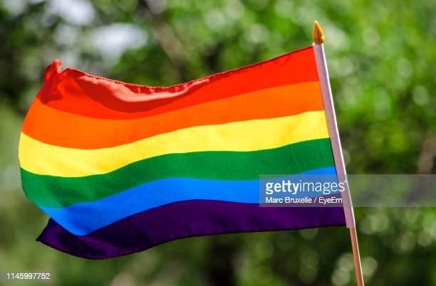 low angle view of flag against blue sky - pride flag stock pictures, royalty-free photos & images