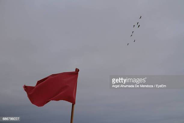 Low Angle View Of Flag Waving Against Birds Flying In Sky