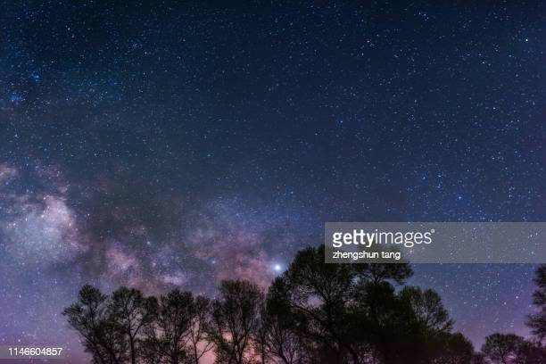 low angle view of galaxy at night - okinawa prefecture stock pictures, royalty-free photos & images