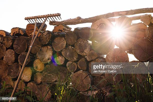 Low Angle View Of Gardening Equipment On Logs During Sunny Day