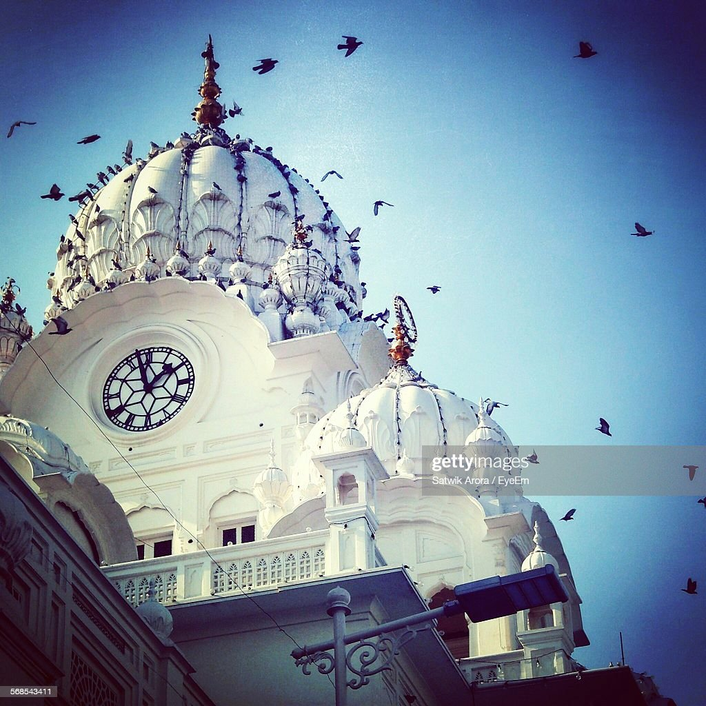 Low Angle View Of Golden Temple Against Birds Flying In Sky : Stock Photo