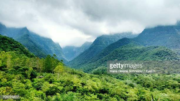 low angle view of green landscape against sky - helena schneider stock pictures, royalty-free photos & images