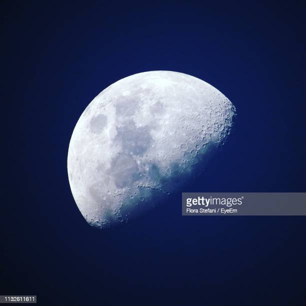 low angle view of half moon at night - moon stock pictures, royalty-free photos & images